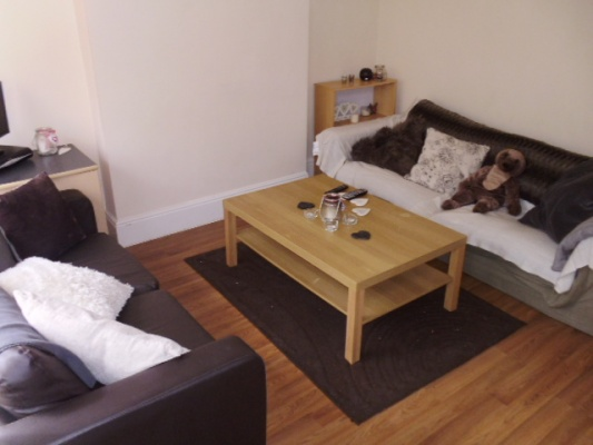 Sheffield Student Housing- Living Area